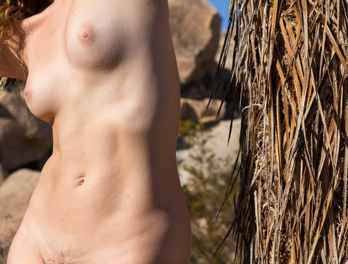 Nude with Joshua Tree