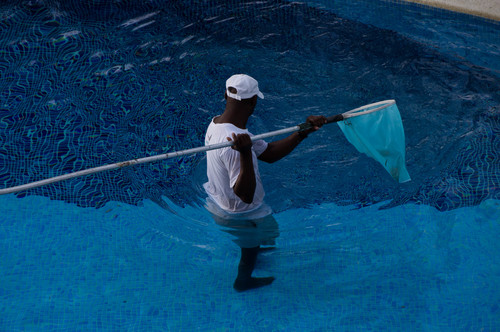 Pool Cleaner