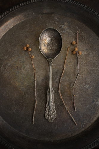 Twig and Spoon Still Life