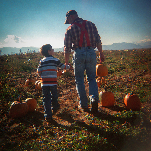 Dreams of our Childhoods: Pumpkin Patch