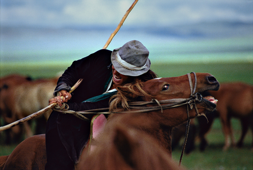 Mongol Arat with his Catch Pole, Central Mongolia