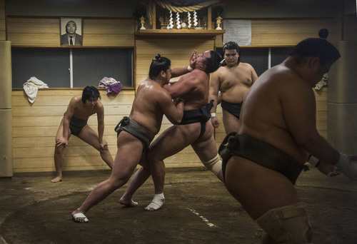 Dying Sport of Sumo