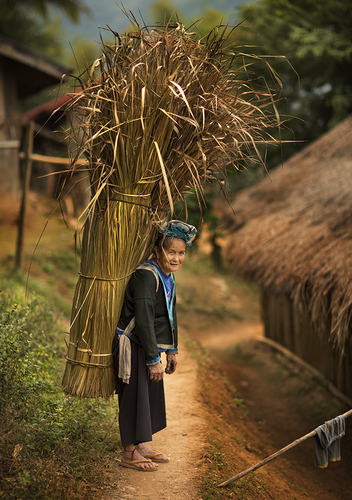 Hmong Lady Northern Laos