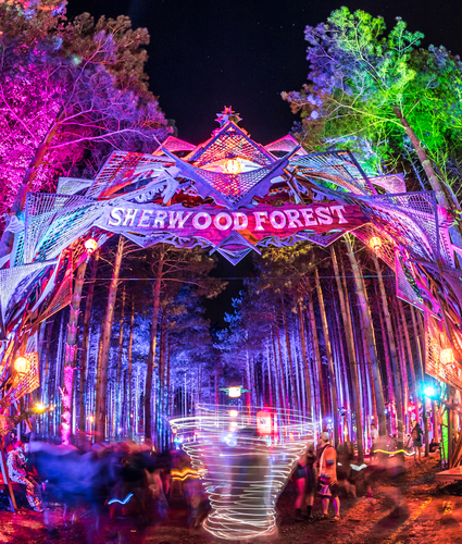 Electric Forest by Alive Coverage II
