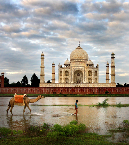 Taj Mahal Morning