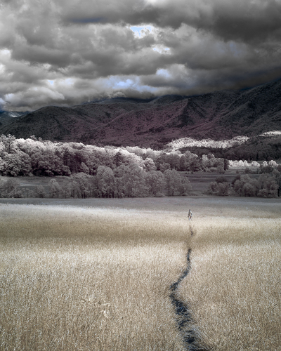 A Walk Before The Storm IR
