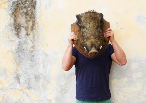 Chef with Wild boar